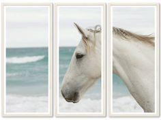 TROWBRIDGE - Horse on Beach - White horse on a beach. in Contemporary white (Frame Code: 612)