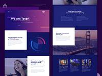 TV Advertising Platform Landing Page