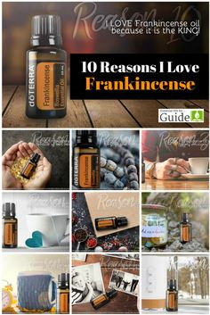 10 Reasons I Love Fr