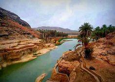 https://flic.kr/p/BJx1KD | Algeria desert tourism | Biskra