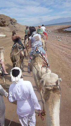 Camel riding in Dahab, Red Sea, Egypt. www.dahabvillas.com