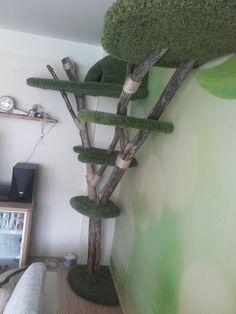 Plant Hanger, Plants, Home Decor, Tree Structure, Decoration Home, Room Decor, Plant, Home Interior Design, Planets