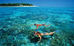 Experience this all inclusive tour that will take you to #snorkel in one of the biggest coral reefs in the world