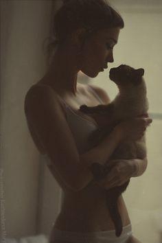kitty cat love   gentle   feline   friendship   soft and lovely