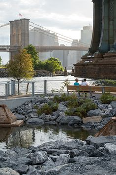 Empire State Building, New York Summer, Genius Loci, Brooklyn Bridge Park, Nyc, Construction, Island, Mansions, Landscape