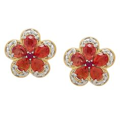 Palladium Silver & 18K Yellow Gold Plate Sapphire & Ruby  Studs Earrings Ruby Earrings, Studs, Sapphire, Plate, Gems, Brooch, Yellow, Silver, Jewelry