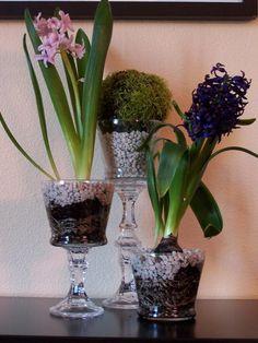 Glass Pedestal Flower Holders