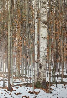 PETER ROTTER