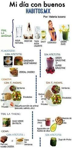 Regimen de habitos saludables