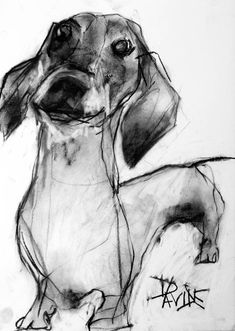 Charcoal Dog Portraits by Valerie Davide