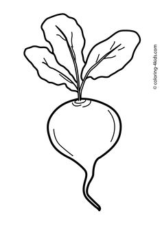 38 Best Rudens Images Vegetable Coloring Pages Coloring Pages For