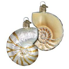 "Nautilus Shell Christmas Ornament 12150 Merck Family Old World Christmas Made of mouth blown glass, hand painted. Measures approximately 3"" In many cultures, the shell is universally"