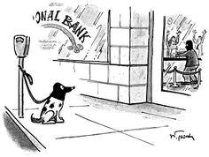 robber-dog.jpg