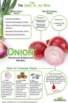 HerbaZest: Sulfur-rich Onion reduces inflammation and blood pressure, and is known to act as a potent antibiotic. Check out and share our newest infographic. Tags: #HerbaZest #Nutrition #Health #Infographic