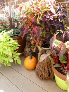 Dorothy Sue and Millie B's too: Fall Container Gardening Inspiration
