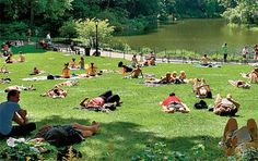 Central Park New York | Central Park, New York