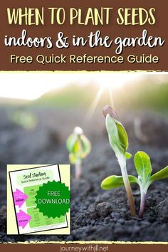 When to Plant Seeds - whether you start seeds indoors or plant the seeds in your garden. For your spring garden, this free quick reference printable guide will show you which crops to plant when, no matter where you live. The perfect guide for beginners Fruit Garden, Garden Pests, Box Garden, Garden Ideas, Garden Insects, Corner Garden, Potager Garden, Garden Guide, Garden Club