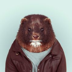 love all of these.  zoo portraits - yago partal