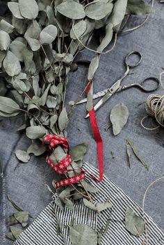 Make a wreath by christmas  by Lydia Cazorla for Stocksy United