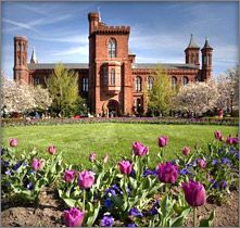 Smithsonian Institution Building (The Castle), Smithsonian information center - free admission