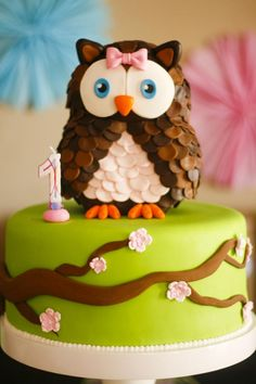 Owl cake :) @Tim. Davis, this would be easier than a fully 3D cake and is SUPER cute. You could even use small styrofoam balls cut into the owl shape ( I could walk you through that) to save money. I wouldn't do the green in fondant... just smooth your frosting well. Your fondant pieces could then be made from a super cheap fondant recipe I have.
