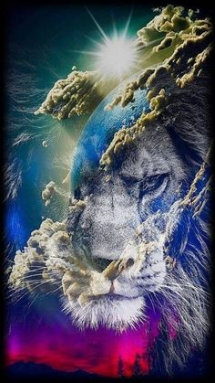 lion in the sky wallpaper by - - Free on ZEDGE™ Lion King Art, Lion Of Judah, Lion Art, Lion Live Wallpaper, Animal Wallpaper, Lion Images, Lion Pictures, Animals Beautiful, Cute Animals