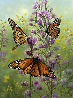 Wildlife art by Joe Hautman, Joe Hautman paintings Butterfly Painting, Butterfly Wallpaper, Butterfly Flowers, Monarch Butterfly, Beautiful Butterflies, Beautiful Flowers, Butterfly Kisses, Butterfly Quotes, Insect Art