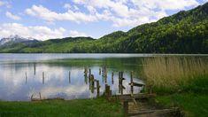 Bei der #Seen-#Radtour im Süden des #Schlossparks #Allgäu handelt es sich um eine gemütliche etwa 20 Kilometer lange #Fahrradtour durch das #Alpenvorland, die an mehreren malerischen #Gewässern vorbeiführt und herrliche #Landschaftsimpressionen zu bieten hat. Besonders schön ist diese Tour auch an warmen Tagen, wenn sich die #Seen entlang der Strecke für eine wohltuende Abkühlung anbieten. https://www.dreimaederlhaus.de/de/blog/radtouren/die-seen-radtour-des-schlossparks-allgaeu.html