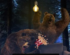 Cheered bears