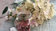 How to Dry Rose Petals Fast