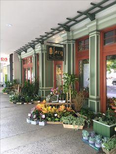 fern florist flower shop spill out retail