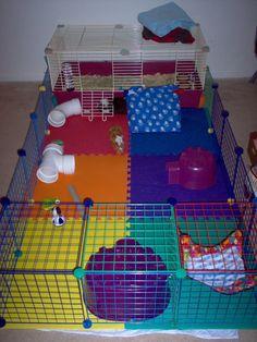 dog in house Guinea Pig Hutch, Guinea Pig House, Pet Guinea Pigs, Guinea Pig Care, Diy Bunny Cage, Bunny Cages, Rabbit Cages, House Rabbit, Indoor Guinea Pig Cage