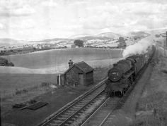 77 photos of the line from Oxenholme through Kendal to Windermere. Windermere, Photo Search, Steam Locomotive, Photo Library, North West, Trains, Engineering, British, England