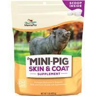 [ Manna Pro Mini Pig Treats and Supplements for Healthy Skin and Coat ] Supplies # Biscuits & Snacks Mini Pig Food, Pigs Eating, Pot Belly Pigs, Pig Party, Positive Reinforcement, Pet Clothes, Good Skin, Healthy Skin