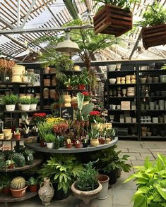 New shop garden displays. Garden Center Displays, Garden Centre, Philadelphia Magic Gardens, Design Food, Flower Pots, Flowers, Shop Front Design, Garden Shop, Design Furniture