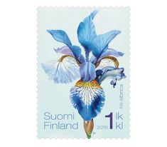COLLECTORZPEDIA Siberian Irises - 1st Class Stamp Legal Tender, Flower Stamp, Iris Flowers, Tampons, Postage Stamps, Ephemera, Badge, Coins, Floral