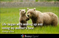 Life began with waking up and loving my mother's face. - George Eliot