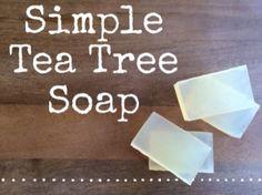 http://www.bulkapothecary.com/blog/soap-recipes/recipe-tea-tree-soap/