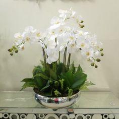 6-Arranjo de orquídeas Indoor Orchids, Orchids Garden, Indoor Plants, Tropical Flower Arrangements, Orchid Arrangements, Orchid Terrarium, Orchid Centerpieces, Wedding Ceremony Flowers, White Orchids