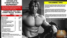 Arnold Chest And Back Workout Routine – Schwarzenegger Training Arnold Chest And Back Workout Routine – Schwarzenegger Training Arnold Chest And Back Workout Routine – Schwarzenegger Training Back Workout Routine, Back Workout Men, Chest And Back Workout, Good Back Workouts, Best Chest Workout, Chest Workouts, Back Exercises, Fun Workouts, Bike Workouts