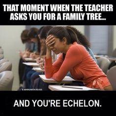 Echelon family tree lmao