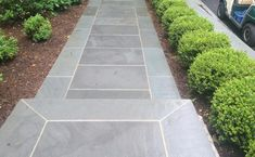 Formal bluestone walkway with evergreen shrubs High Building, Front Steps, Evergreen Shrubs, Growing Plants, Walkway, Natural Stones, Paths, Tile Floor, Home Renovation