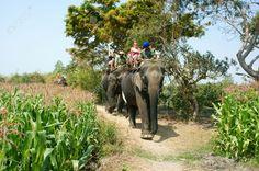 Buon Me Thuot- VietNam countryside