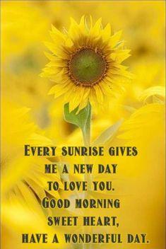 Sunflower Poem, Prayer Wallpaper, Prayer Poems, Christ In Me, Everyday Prayers, Good Morning My Love, Courage To Change, Bible Verse Art, Serenity Prayer
