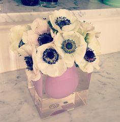 Jonathan Adler Bel Air + anemones - Elements of Style Blog