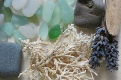 Beach Decor Sea Glass Feathers Beach Glass Driftwood.