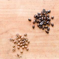 【みんなのコーヒー物語】コーヒーショップでまごまごしない?!覚えておきたい基本の豆知識。
