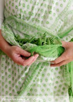 vegetarian by Lakshmi
