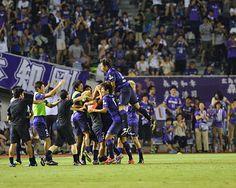 [ J1:第21節 広島 vs 名古屋 ] ミキッチの今季2ゴール目で先制した広島。得点後、ベンチメンバーも共にゴールを喜んだ。  2013年8月17日(土):エディオンスタジアム広島