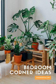 Buy Indoor Plants Online, Best Indoor Plants, Indoor Garden, Home Decor Furniture, Diy Home Decor, Alocasia Plant, Diy Home Interior, Bedroom Corner, Hanging Plants